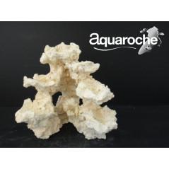 Reef basis small and medium