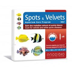 Spots & Velvets salt 6 bulbs
