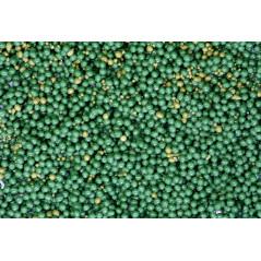 Spirulina+Globuli for the supply of phytoplankton 1000ml
