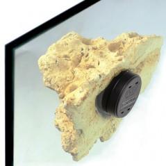 Coral Rack nano