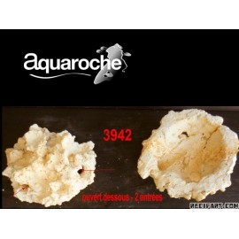 Aquaroche Gobie home 2 entries (opened basis)