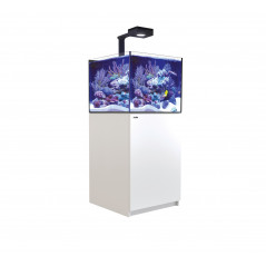 Red Sea Reefer XL200 Deluxe