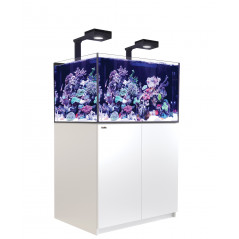 Red Sea Reefer XL300 Deluxe