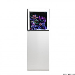 Cube 20 cabinet