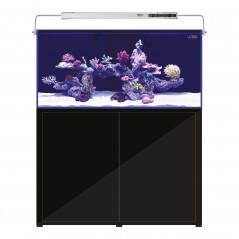 L'aquarium 2.0 570L