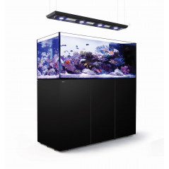 Red Sea Reefer Peninsula 650 deluxe