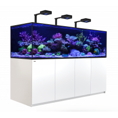 Red Sea Reefer-S deluxe 1000