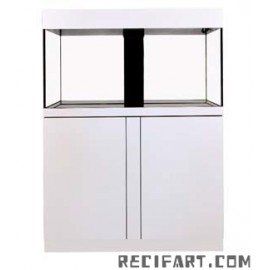 Complete reef tank Magnifica 100 CF + sump