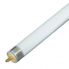 Tube LUMIVIE SB (blanc) - T5 24w (55cm)