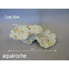 Aquaroche coral bridge