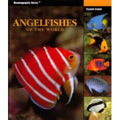 Angelfishes Of The World