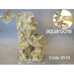 Aquaroche angle