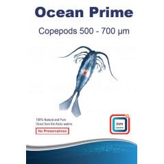 Ocean Prime 2mm 50g